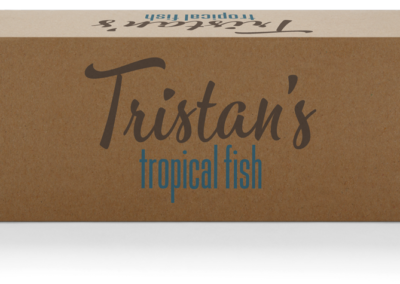Tristan's Tropical Fish